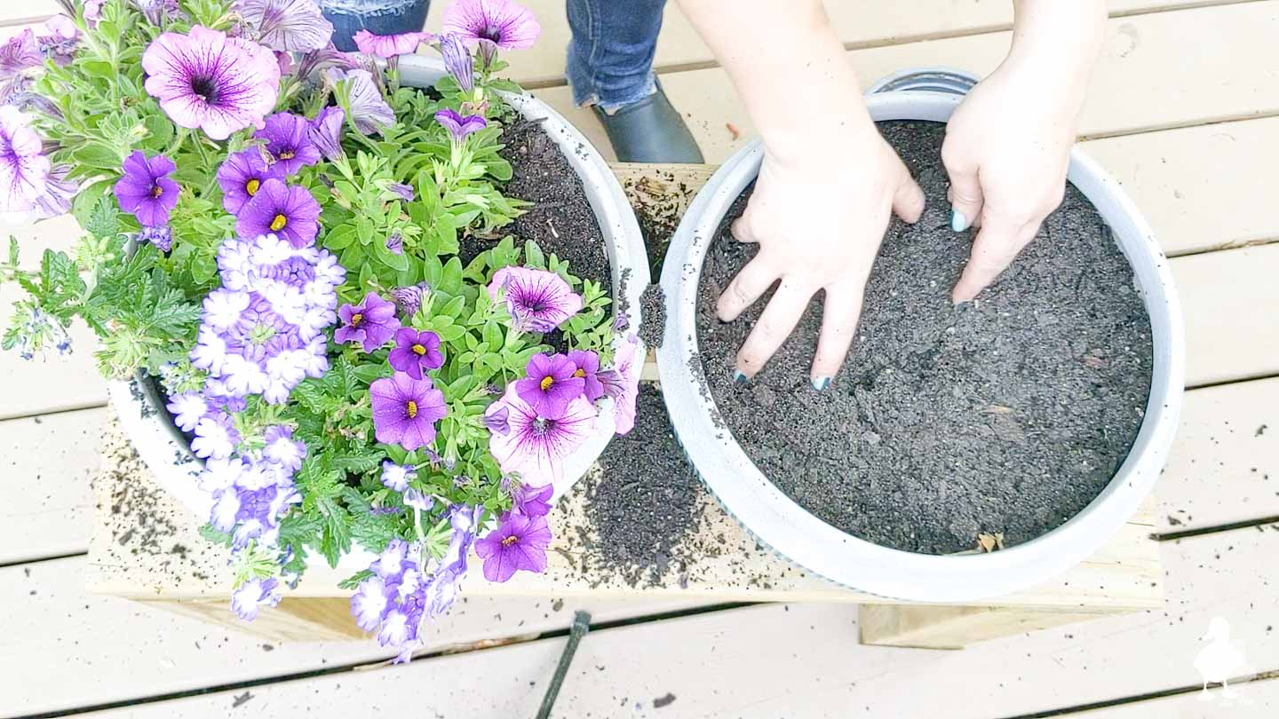 adding soil and potting new plants