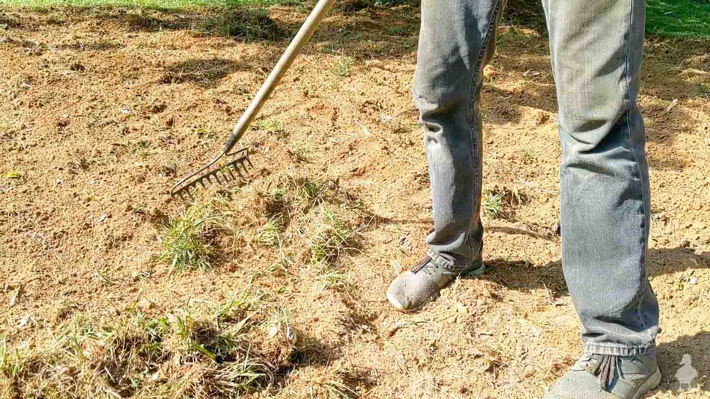 rake out all the weeds