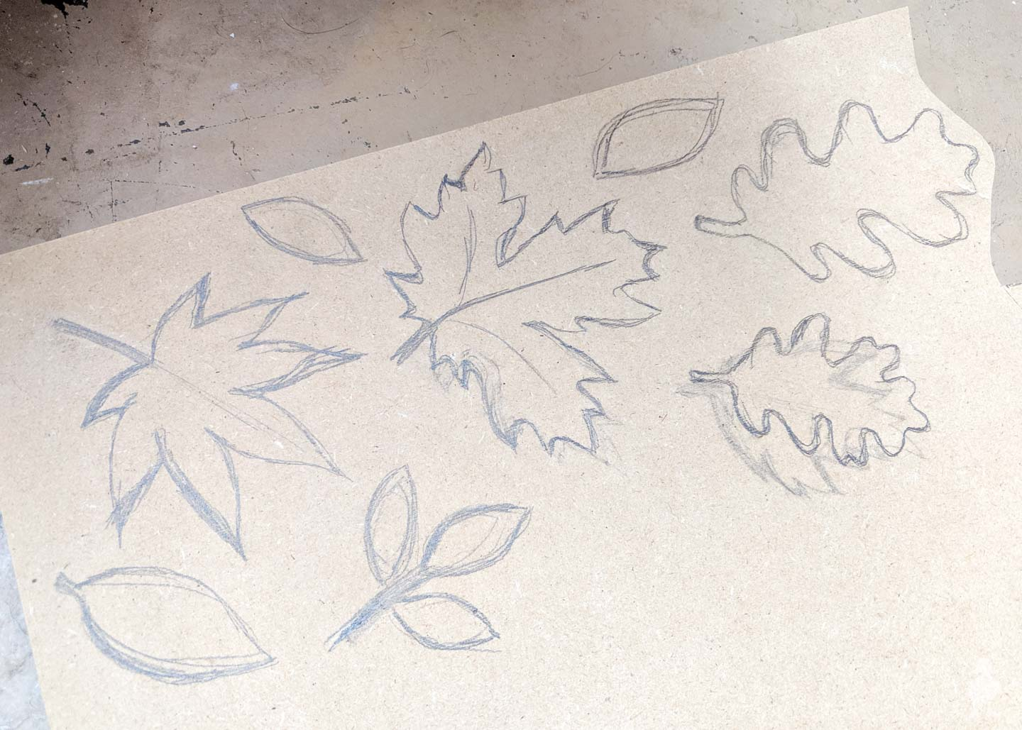 sketches of leaves on MDF