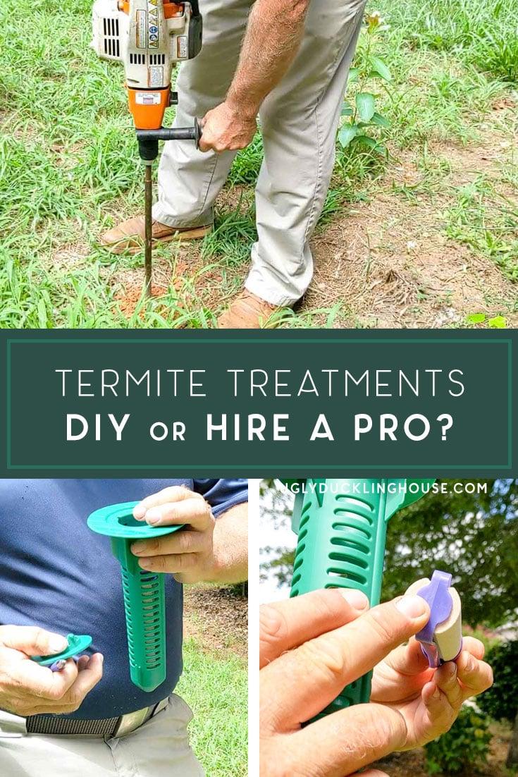 should you diy termite treatments or hire a pro