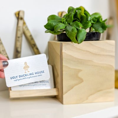 succulent business card holder