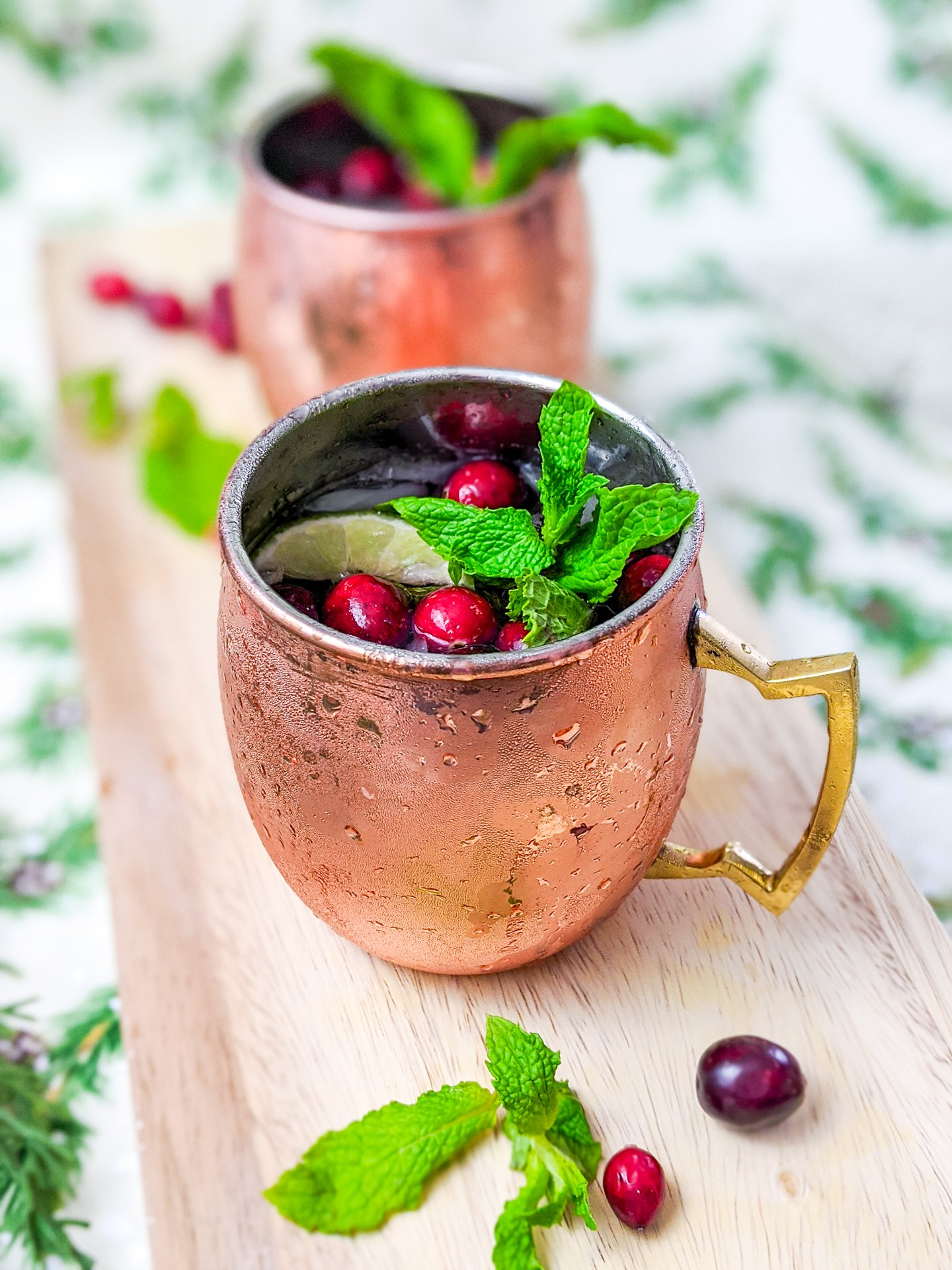 Spiced n' Sparkling Cranberry Mule
