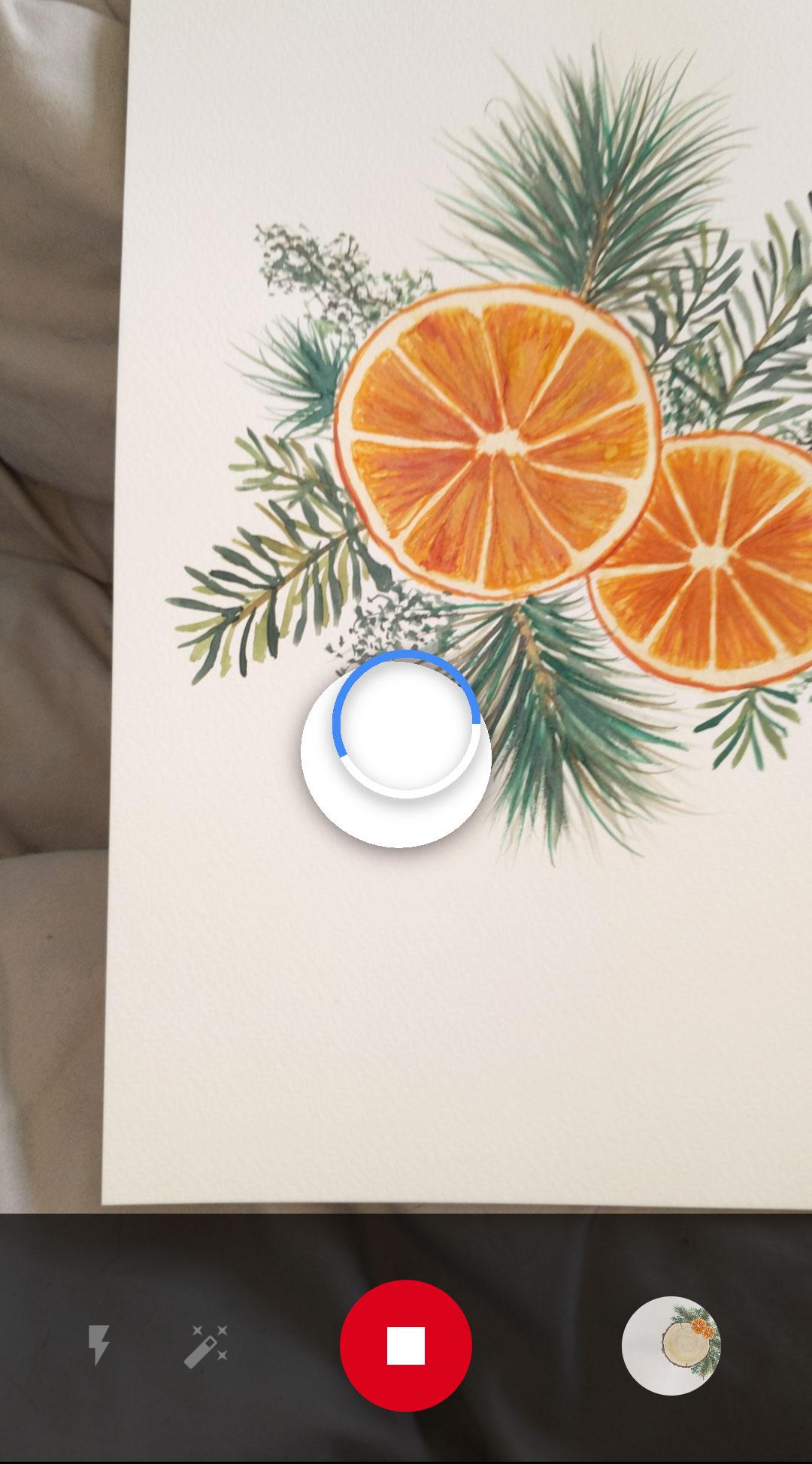 orange slices watercolor photoscan app