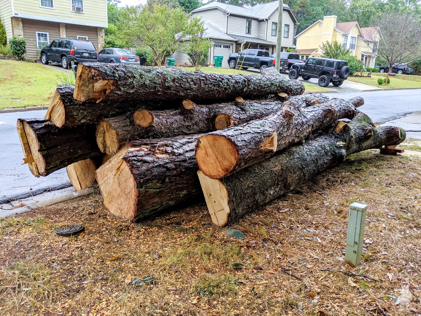 large log pile of pine and magnolia