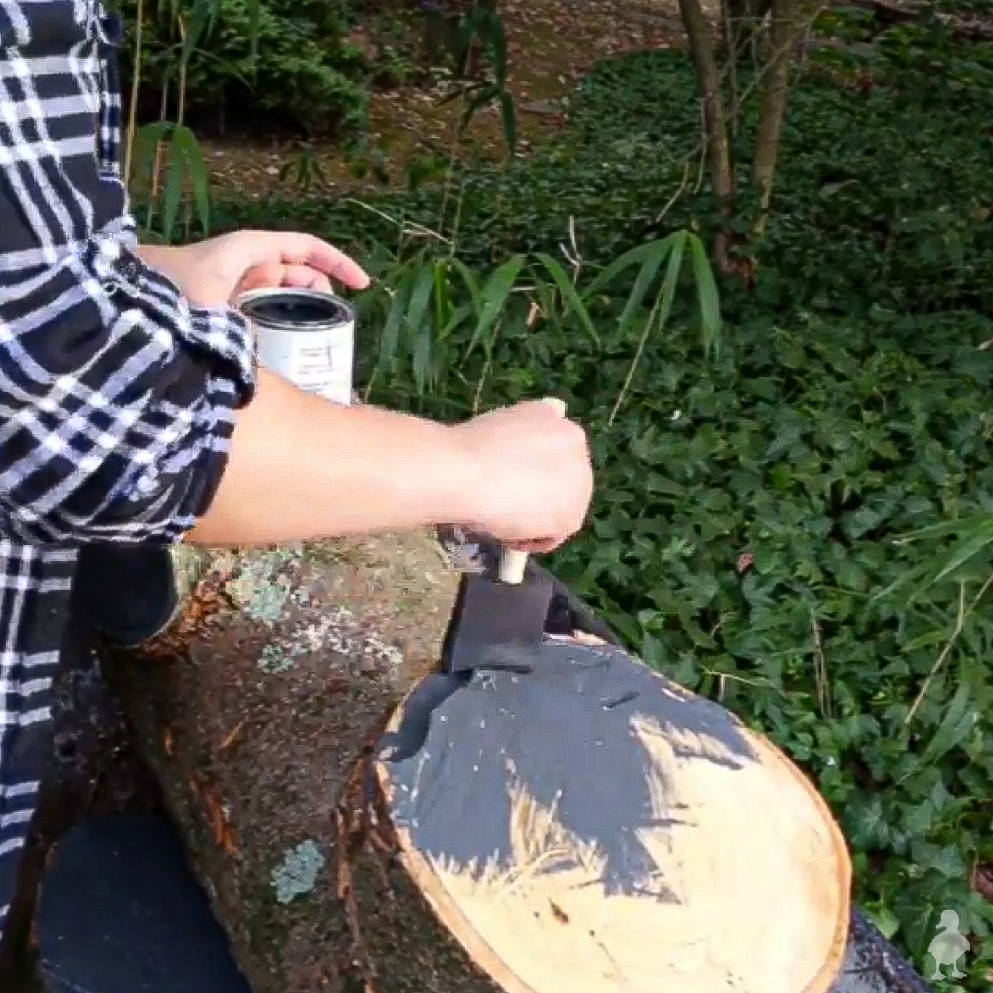 sealing wood blanks for carving with latex paint