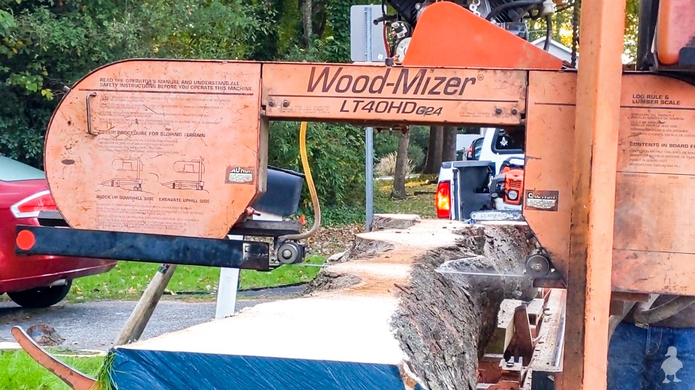 wood slices live edge slabs