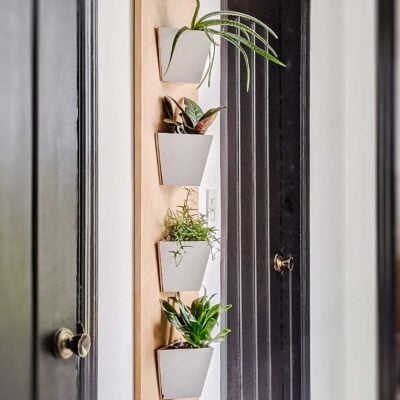 wall-planters-in-bedroom-hallway-with-houseplants