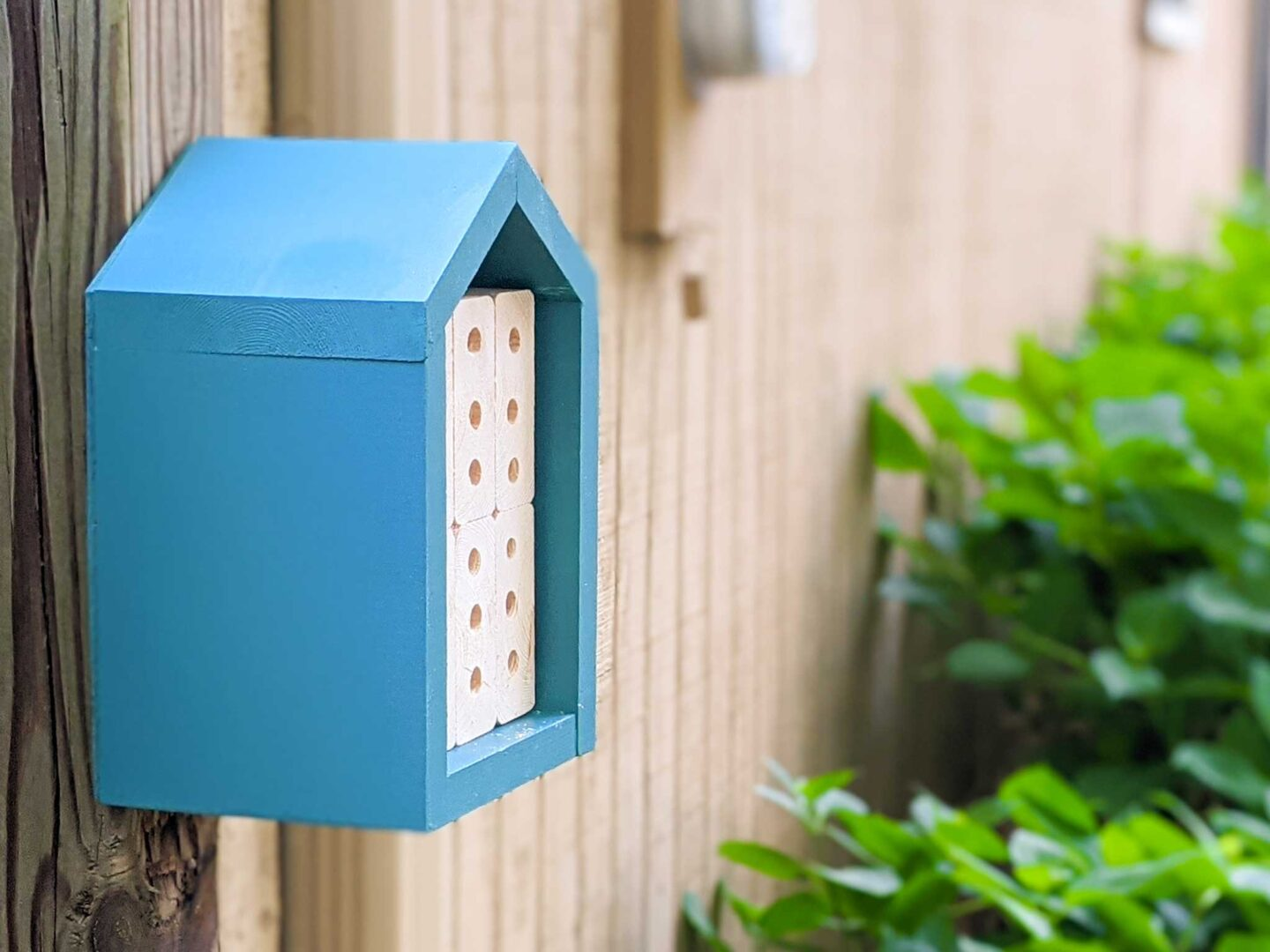 DIY bee hotel that is easy to maintain