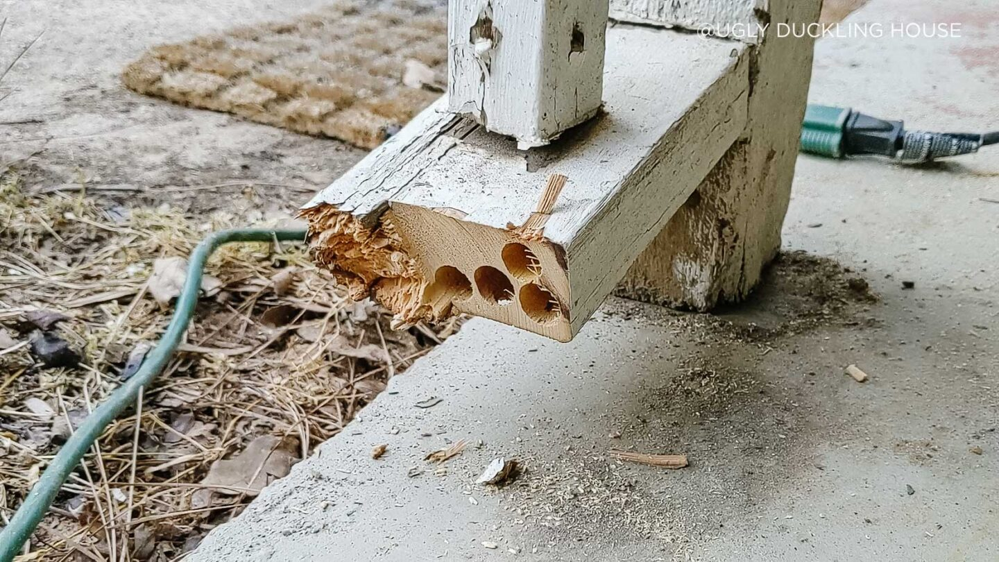 closeup-of-carpenter-bee-damage-in-porch-railing---copyright-Ugly-Duckling-House-1