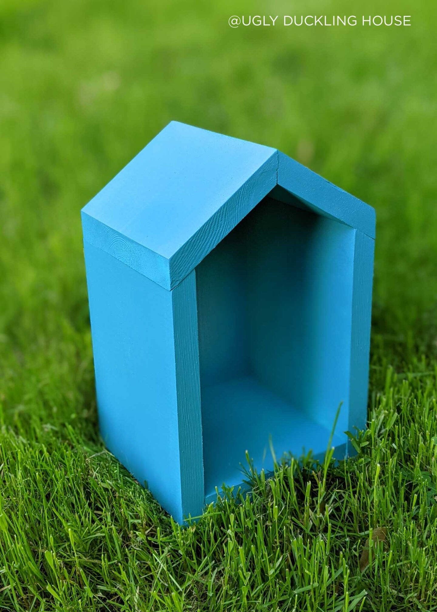 blue color for bee house